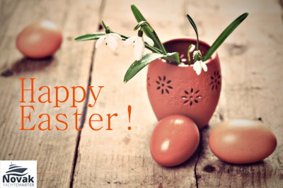 Happy Easter from Charter Novak's team!